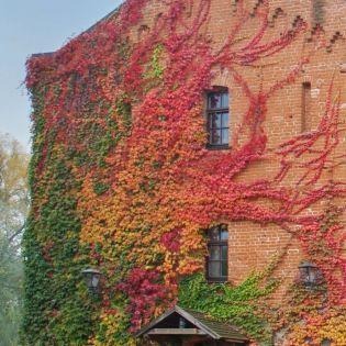 Экскурсия, романтика и экстрим — лучшее в Житомире