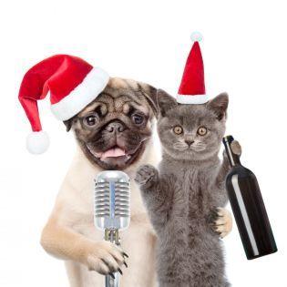 Тест: Угадай новогоднюю песню по строчке