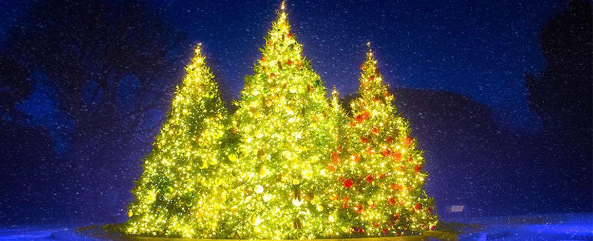 Волшебный мир: Рождество в Нью-Йорке