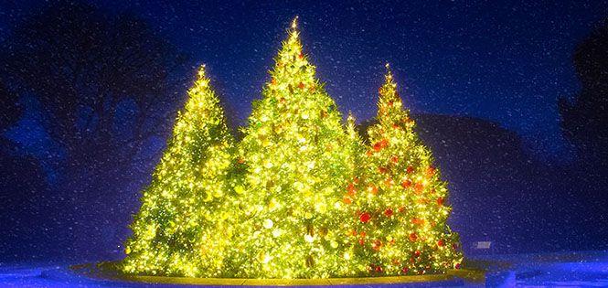 Зачарований світ існує: Різдвяний Нью-Йорк