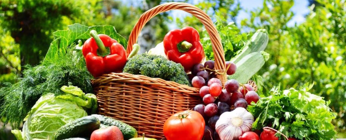 5 продуктів, які легко виростити на підвіконні