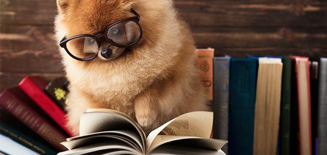 Читай: 3 проникливі книжки