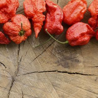 Що буде, якщо з'їсти найгостріший перець у світі? (Відео)
