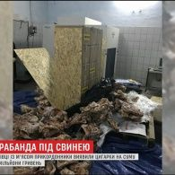 Чернівецькі прикордонники виявили 244  ящики цигарок під свининою у одній із фур