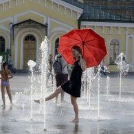 Африканська спека в Україні: як від аномальної температури рятуються тварини