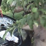 СБУ затримала на Луганщині ватажка одного з бандугруповань так званої «ЛНР»