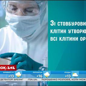 Что такое стволовые клетки и почему они так важны - соучредитель CryoSave в Украине Игорь Паливода