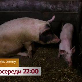 Нова родина та 26 свиней – дивіться Міняю жінку на 1+1