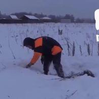 Відео з місця катастрофи Ан-148