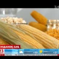 Кукурудза - поради дієтолога