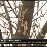 На Донеччині в результаті обстрілу загинули троє бійців 128 гірсько-піхотної бригади