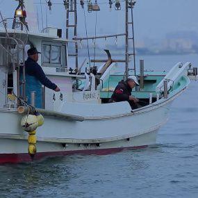 Японія – смертоносна риба фугу і місто роботів. Світ навиворіт - 2 серія, 9 сезон