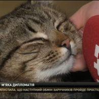Міністерство закордонних справ України, взяло на роботу кота