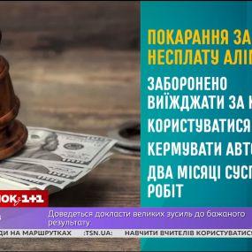 Как работает Закон об алиментах - начальник Главного территориального управления юстиции в г.. Киеве