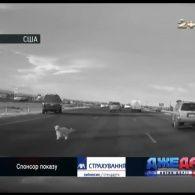 Добірка найгучніших аварій зі світових доріг – Джедаі за 23 грудня 2016 року
