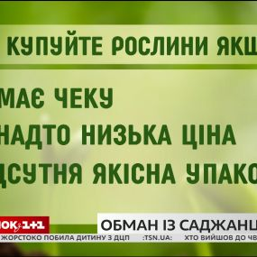 """Як не стати жертвою """"квіткового лохотрону"""" - поради Наталії Підлісної"""
