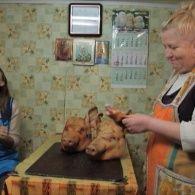 Барышня-Крестьянка 138 выпуск. Лана Багорко и Даша Азарова
