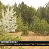 На Миколаївщині  ялинки почали обробляти розчином з неприємним запахом