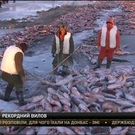 Китайські рибалки дістали з-під криги близько двохсот тонн риби