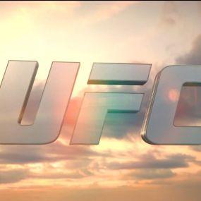 UFC Fight Night. Випуск за 12 листопада 2017 року