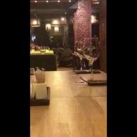 Затримання Саакашвілі у ресторані Києва