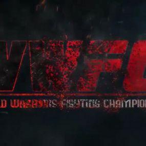 Бої турніру WWFC у Києві 27 вересня 2017 року