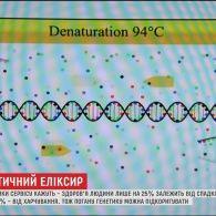 Секрет молодості: в Україні створили сервіс, що складає особистий раціон людини, аналізуючи її гени