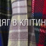 Міжнародний день рідної мови: перевір, чи добре ти знаєш рідковживані українські слова