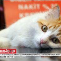 В Італії кіт успадкував від своєї господині 30 тисяч євро