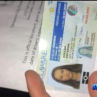 В Україні і досі можна купити водійське посвідчення