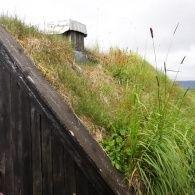 Трав'яні дахи стали новим трендом в архітектурі