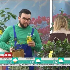 Руслан Сенічкін змінює професію: розіграш від Телесніданку