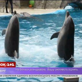 Виды термобелья сколько стоит вход в дельфинарий в батуми слой