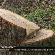 Битва за сквер у Києві