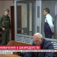 В Одесі розпочався суд над чоловіком, якого звинувачують в убивстві майже сотні кошенят