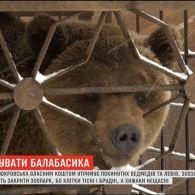 На Донеччині волонтери добиваються розформування стихійного зоопарку