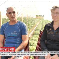 Угорськомовні українці висловили свою думку про стосунки між двома рідними країнами