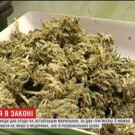 Сенат Канади легалізував вживання та вирощування марихуани