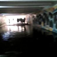 Київ потрапив у полон водяного апокаліпсису