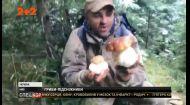 На Прикарпатті збирають гриби під снігом
