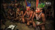Звичаї племені Татуйо або як мавпу на вогні готувати