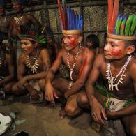 Обычаи племени Татуйо или как обезьяну на огне готовить