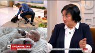 Игривые и неприхотливые: владелица французских бульдогов рассказала об особенностях породы