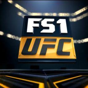 UFC TUF Finale. Випуск за 4 січня 2019 року