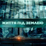 Загублений світ 2 сезон 7 випуск. Життя під землею