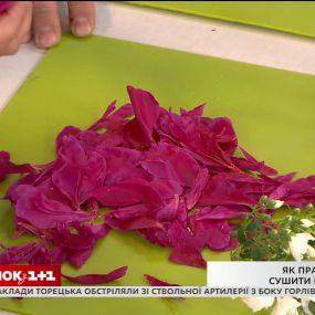 Як правильно сушити рослини - Наталя Підлісна