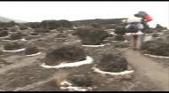 Мир наизнанку 3 сезон 6 выпуск. Африка. Килиманджаро
