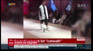 У Стамбулі під час модного показу на подіум вийшла кішка
