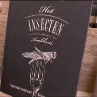 У Нідерландах дозволили вирощувати та продавати комах для використання у їжу