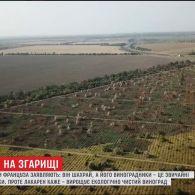 На Одещині невідомі щороку палять виноградники француза, бо вважають його шахраєм